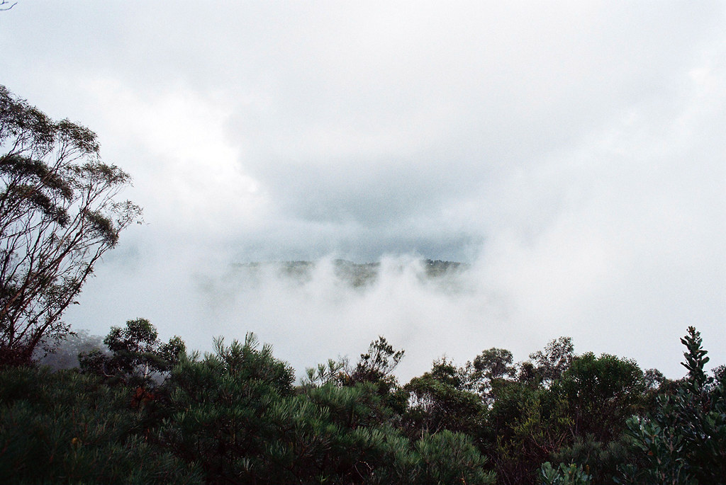 Jamieson Valley Lookout on a rainy and misty day (Nikon FM2 & Kodak Color 200)