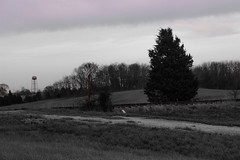 Abandoned Crossing