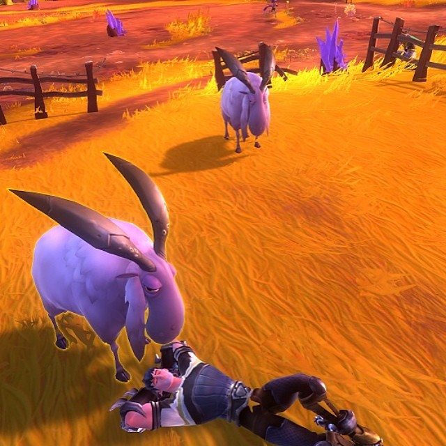 Way too much to do in WildStar #sheep #relaxing #videogame