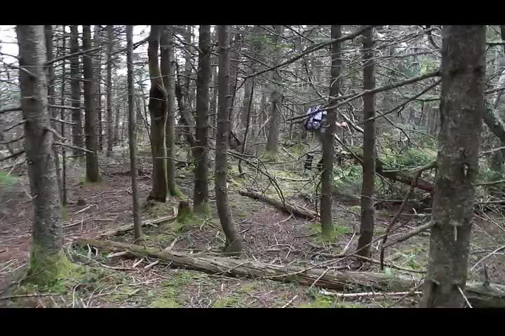 252 Video of Catskill Bushwhacking in the Balsam Firs on Doubletop Mountain