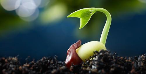 Seed Blog | by USDAgov