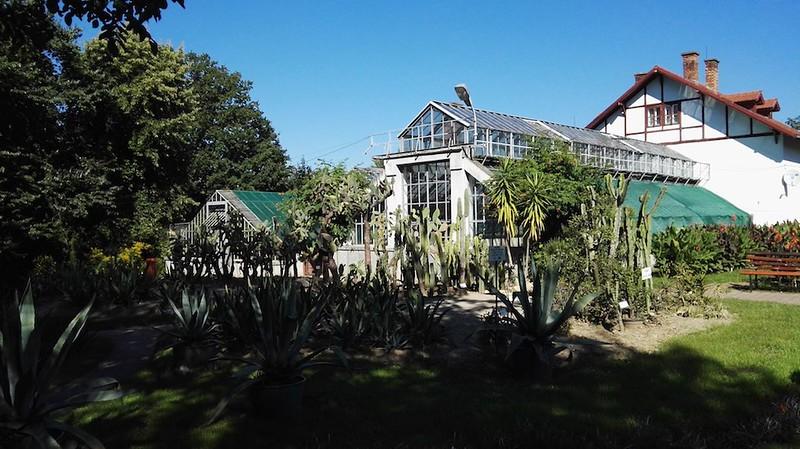 Gradina_Botanica_Cluj-4