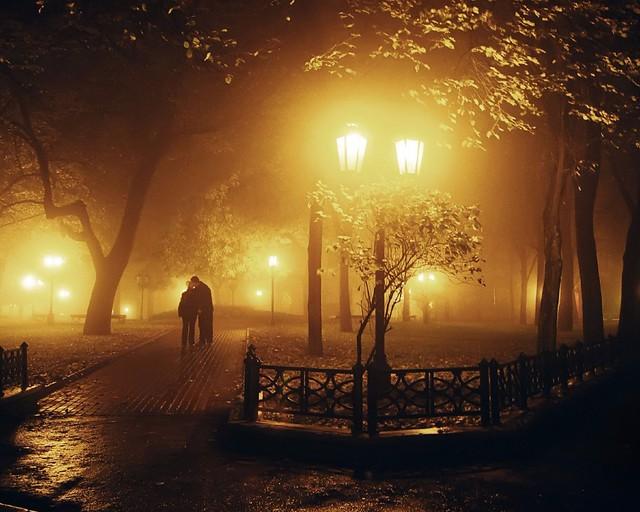 Midnight Walk in the Park