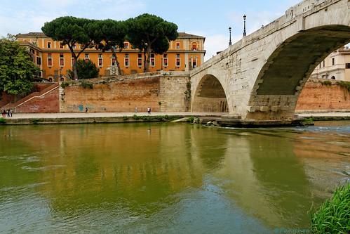rome roma italy italia bridge ponte cesto isolatiberina ospetadefatebenefratelli pinetrees nikon d7100 nikkor1685f3556gedvr lazio latium pontecestio pantchoa pantxoa françoisdenodrest