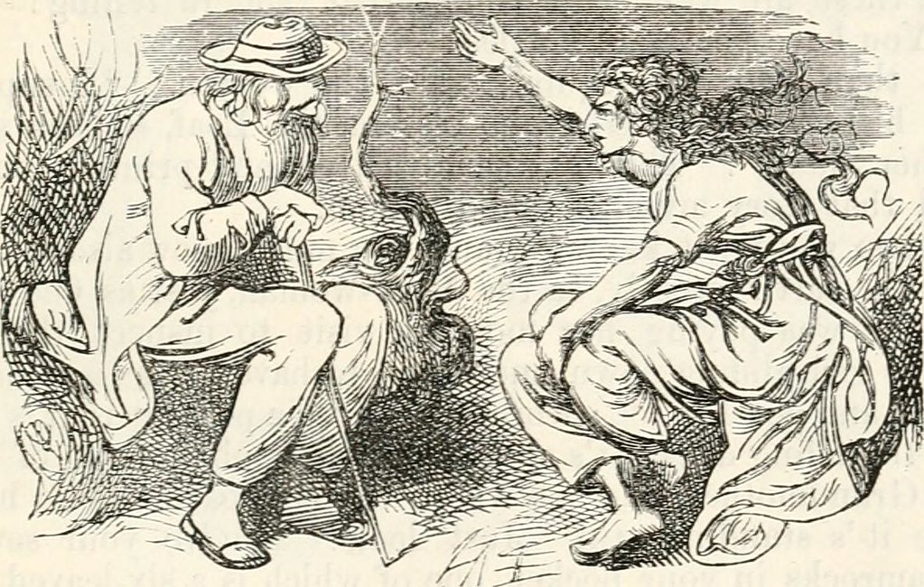 "Image from page 828 of ""Stories for the household"" (1889) 