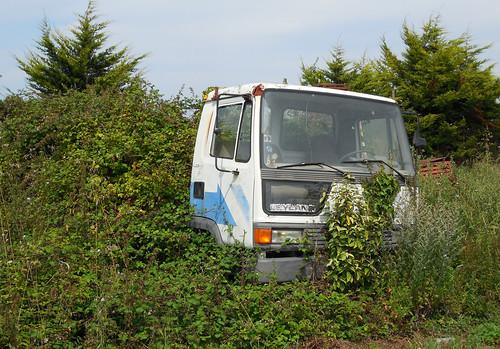 Leyland Roadrunner   by Spottedlaurel