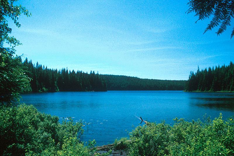 Amor Lake, Sayward Forest Canoe Route, Vancouver Island, British Columbia