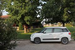 Fiat-500L-2013