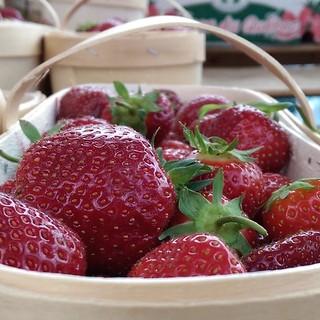 Abundant berries. | by jfingas