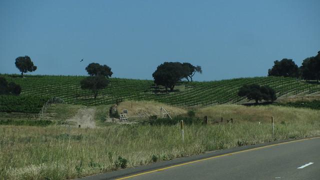 IMG_2828 rural santa barbara county landscape views from car