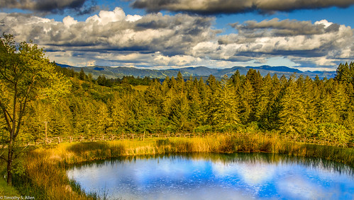 california napacounty landscape forest pond water clouds hdr dramatic sunset golden hour