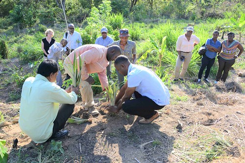 Flick album: Trinityville Area Integrated Land Management and Disaster Risk Reduction Project Donors Supervision Visit