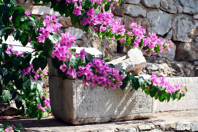 Ancient artifact from a villa near Split