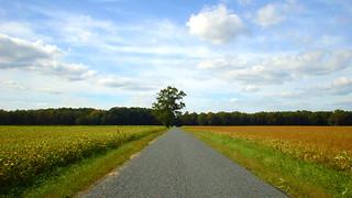Road to heaven?   by vj_fliks