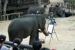Elephant_painting@_Mae_Sa_Elephant_camp,_Chiang_Mai