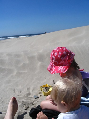 beach and dune