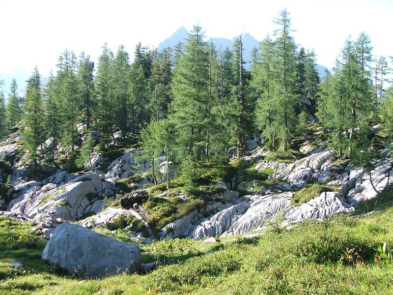 Alpenlandschaft Nr. 5