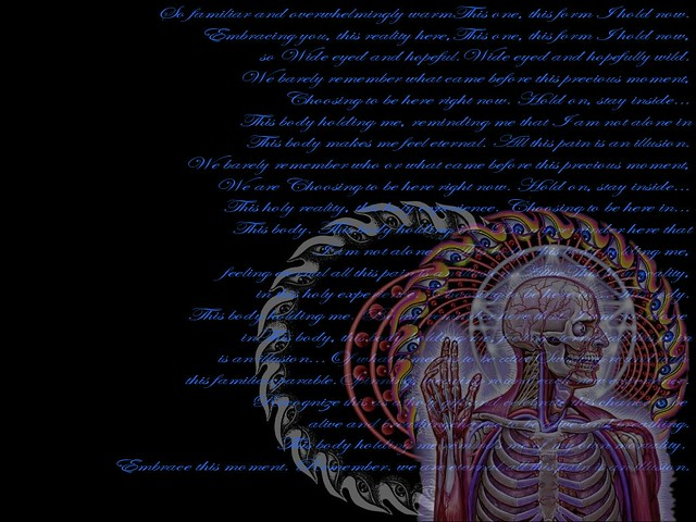 Alex Grey With Parabola Lyrics A Wallpaper I Made For My C