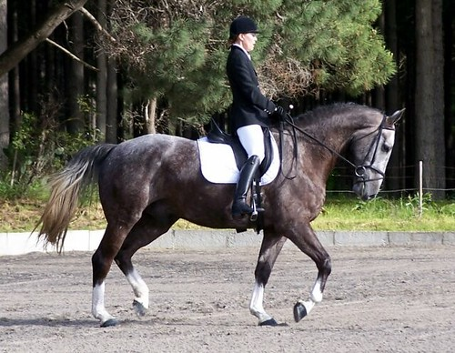 SHORA Dressage - Sunday 9 October 2005 | by andreavallejos