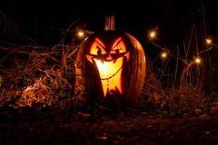 Scary Jack-o'-Lantern | by Troy B Thompson