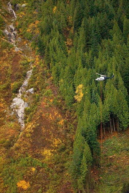 Heli Logging 62