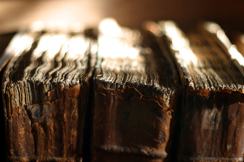 Old Spines | by brighterorange