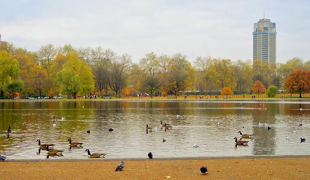 London - Hyde Park 4