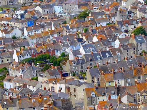 life road street travel blue trees houses windows streets color colour green cars lines architecture buildings portland grey living doors slim rooftops artistic terraces creative lifestyle roofs dorset summertime colourful slate roads narrow portlandstone attics terracedhouses southcoastofengland creativeartphotography panasoniclumixdmc pbwa belindafewings lowlevelarielphotography