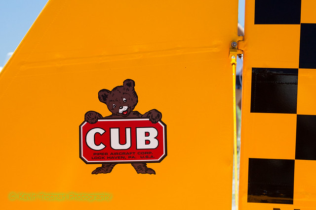 The Unmistakable Cub