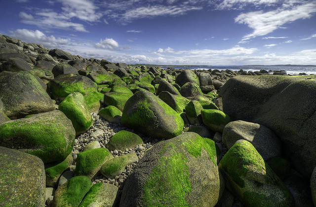 The Rocky Shores Of Gweedore