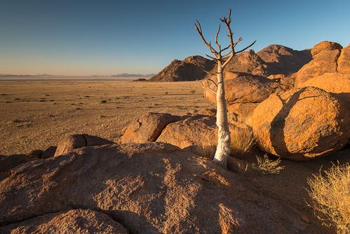 africa namibia southwestafrica travel hardap mamibnaukluftnationalpark namiddesert desert landscapes sunset