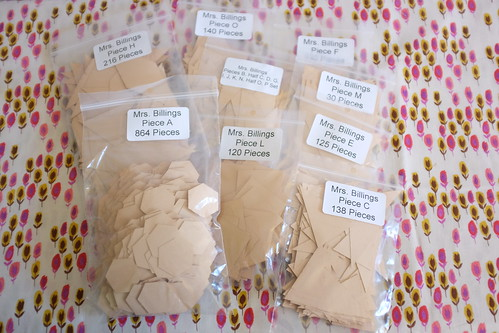All the paper pieces! | by Penny Poppleton