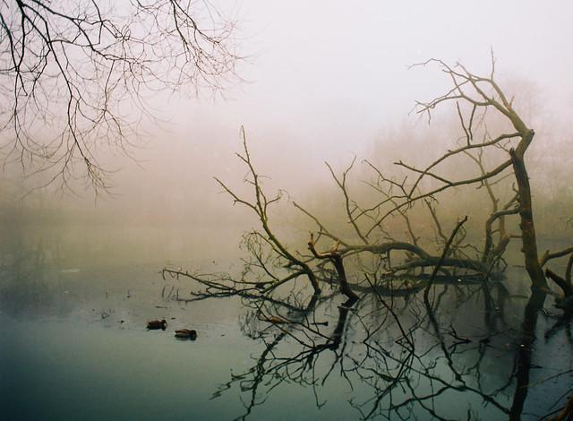 Roundhay Lake, OM-1n Ektar