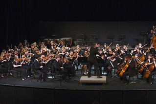 Combined Philharmonic & Youth Orchestra Strings