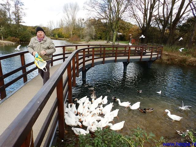 09-11-2013          Beverwijk      23.5 Km  (12)