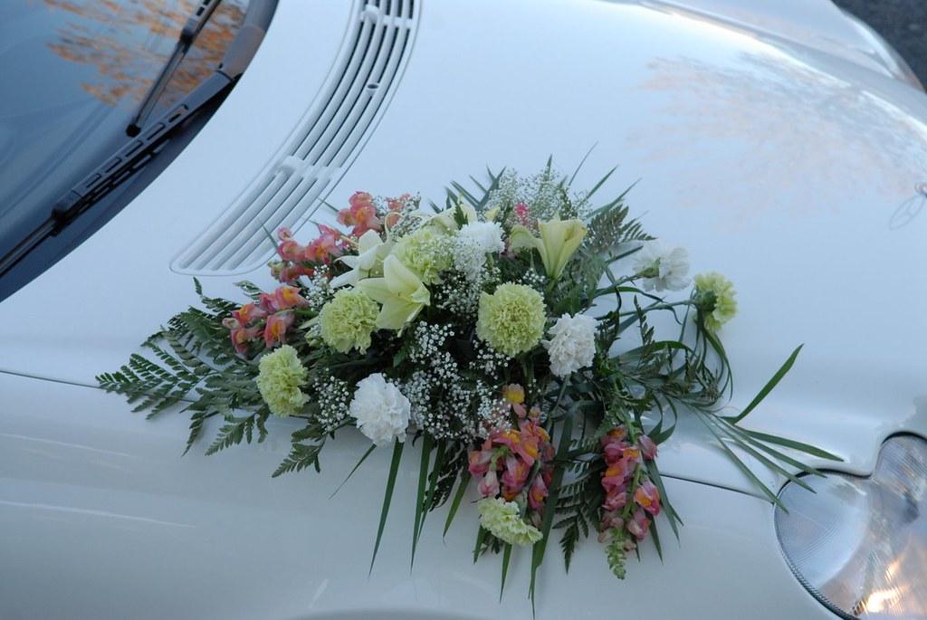 Farah Florist W-Car-2.      $100