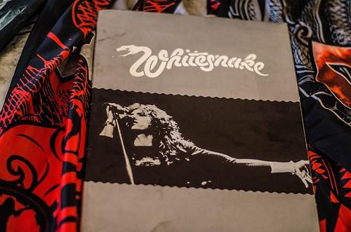 Whitesnake (7)