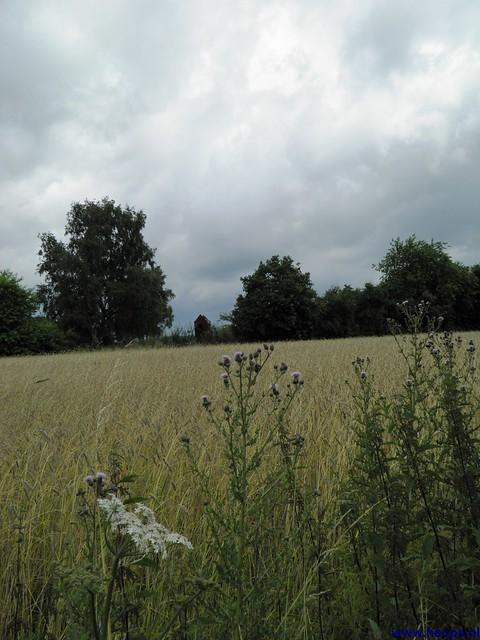 19-07-2012 3e dag Nijmegen (29)