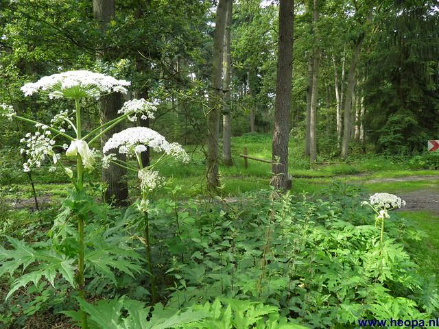 23-06-2012 dag 02 Amersfoort  (23)