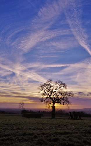 sunrise haughmond hill shropshire sky clouds light colour tree silhouette hills field lines trails