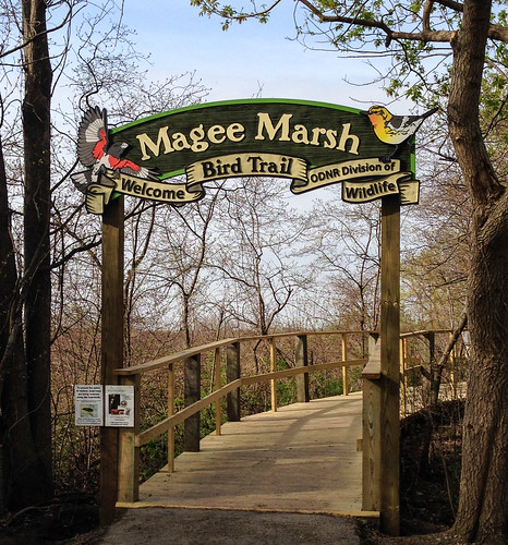 Magee Marsh Boardwalk Entrance