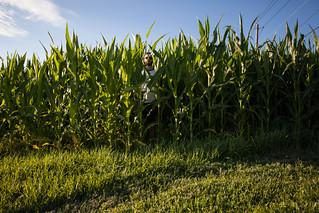 howedren of the corn3 (1 of 1)   by Tamara Hala