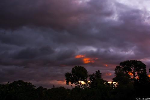sunset silhouette canon sunsets australia southaustralia gawler canonphotography sunsetphotography canoneos450d sunsetaday violetashessunset corpril violetashessunsettumblrcompost82281042005sunset100