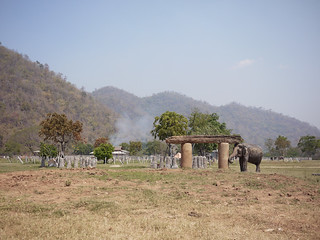 Elephant Nature Park Chiang Mai-23 | by shalai6