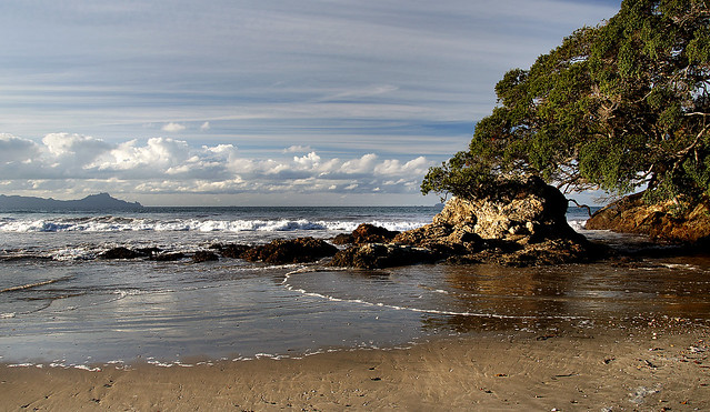 Waipu Beach.Northland. NZ