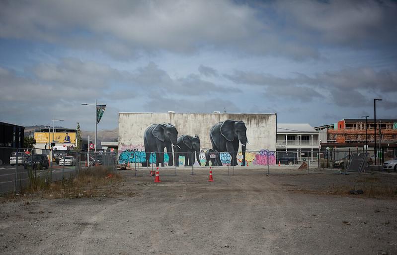 street elephants