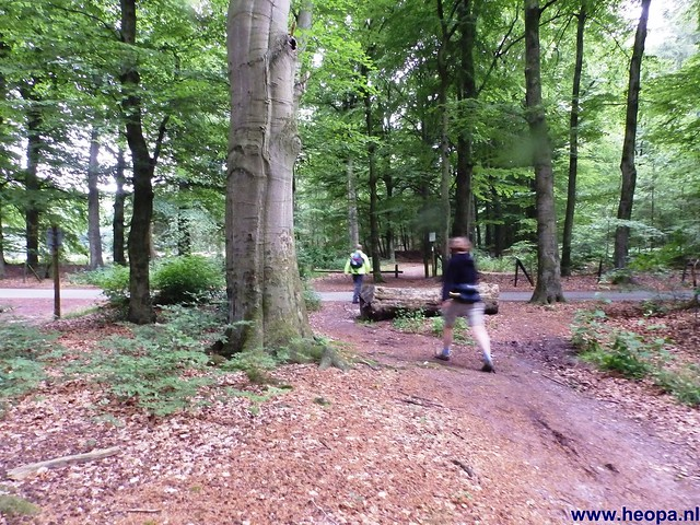 14-06-2014  Veenendaal        40 Km  (13)