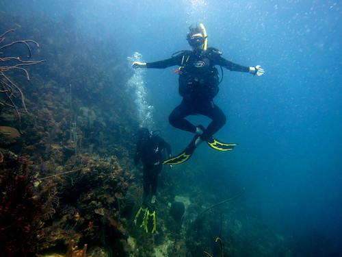 2012 - Honduras - Diving - Julie Frog | by SeeJulesTravel