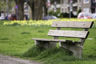 Bench Bokeh | by The lens profile