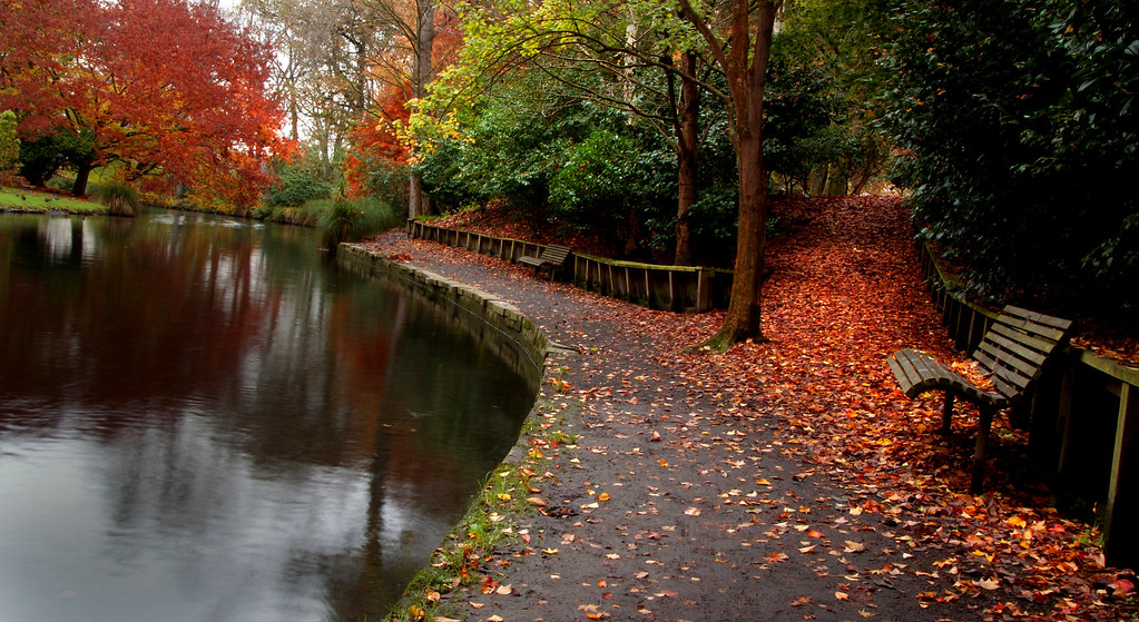 Autumn Christchurch NZ | The Avon follows a meandering cours